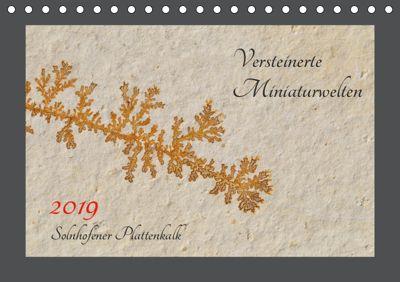 Versteinerte Miniaturwelten. Solnhofener Plattenkalk (Tischkalender 2019 DIN A5 quer), Dietmar Leitner