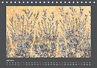 Versteinerte Miniaturwelten. Solnhofener Plattenkalk (Tischkalender 2019 DIN A5 quer) - Produktdetailbild 7