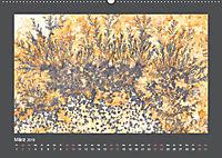 Versteinerte Miniaturwelten. Solnhofener Plattenkalk (Wandkalender 2019 DIN A2 quer) - Produktdetailbild 3