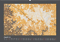 Versteinerte Miniaturwelten. Solnhofener Plattenkalk (Wandkalender 2019 DIN A2 quer) - Produktdetailbild 8