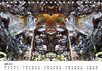 Verzauberte WälderAT-Version (Tischkalender 2019 DIN A5 quer) - Produktdetailbild 7