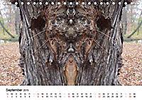 Verzauberte WälderAT-Version (Tischkalender 2019 DIN A5 quer) - Produktdetailbild 9