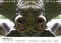 Verzauberte WälderAT-Version (Tischkalender 2019 DIN A5 quer) - Produktdetailbild 12