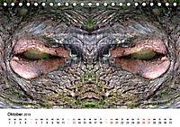 Verzauberte WälderAT-Version (Tischkalender 2019 DIN A5 quer) - Produktdetailbild 10