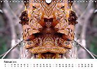Verzauberte WälderAT-Version (Wandkalender 2019 DIN A4 quer) - Produktdetailbild 2