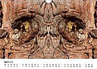 Verzauberte WälderAT-Version (Wandkalender 2019 DIN A4 quer) - Produktdetailbild 4