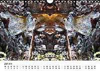 Verzauberte WälderAT-Version (Wandkalender 2019 DIN A4 quer) - Produktdetailbild 7