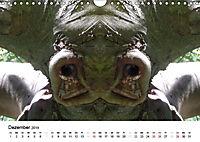 Verzauberte WälderAT-Version (Wandkalender 2019 DIN A4 quer) - Produktdetailbild 12