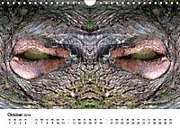 Verzauberte WälderAT-Version (Wandkalender 2019 DIN A4 quer) - Produktdetailbild 10