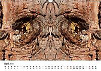 Verzauberte WälderAT-Version (Wandkalender 2019 DIN A3 quer) - Produktdetailbild 4