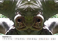 Verzauberte WälderAT-Version (Wandkalender 2019 DIN A3 quer) - Produktdetailbild 12