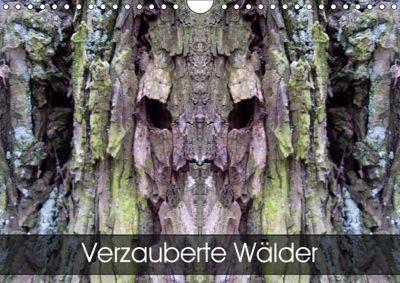 Verzauberte WälderAT-Version (Wandkalender 2019 DIN A4 quer), Elken Schlüfter