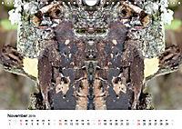 Verzauberte WälderAT-Version (Wandkalender 2019 DIN A4 quer) - Produktdetailbild 11
