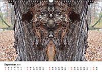 Verzauberte WälderAT-Version (Wandkalender 2019 DIN A3 quer) - Produktdetailbild 9