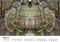 Verzauberte WälderAT-Version (Wandkalender 2019 DIN A3 quer) - Produktdetailbild 1