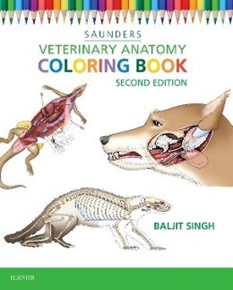 Veterinary Anatomy Coloring Book Buch versandkostenfrei bei ...