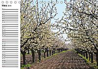 Vier Jahreszeiten im Land Brandenburg (Tischkalender 2019 DIN A5 quer) - Produktdetailbild 3
