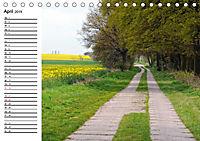 Vier Jahreszeiten im Land Brandenburg (Tischkalender 2019 DIN A5 quer) - Produktdetailbild 4