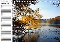 Vier Jahreszeiten im Land Brandenburg (Tischkalender 2019 DIN A5 quer) - Produktdetailbild 10