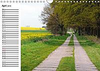 Vier Jahreszeiten im Land Brandenburg (Wandkalender 2019 DIN A4 quer) - Produktdetailbild 5