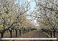 Vier Jahreszeiten im Land Brandenburg (Wandkalender 2019 DIN A4 quer) - Produktdetailbild 3