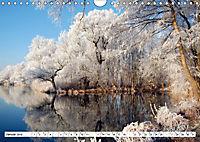 Vier Jahreszeiten im Land Brandenburg (Wandkalender 2019 DIN A4 quer) - Produktdetailbild 1
