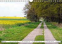 Vier Jahreszeiten im Land Brandenburg (Wandkalender 2019 DIN A4 quer) - Produktdetailbild 4
