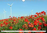 Vier Jahreszeiten im Land Brandenburg (Wandkalender 2019 DIN A4 quer) - Produktdetailbild 6
