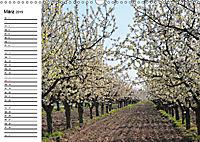 Vier Jahreszeiten im Land Brandenburg (Wandkalender 2019 DIN A3 quer) - Produktdetailbild 3