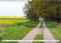 Vier Jahreszeiten im Land Brandenburg (Wandkalender 2019 DIN A3 quer) - Produktdetailbild 4