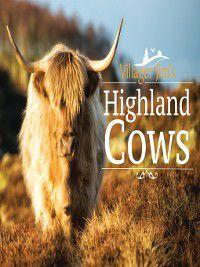 Villager Jim's Highland Cows, Villager Jim