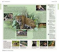 Vis-à-Vis Reiseführer Costa Rica - Produktdetailbild 4