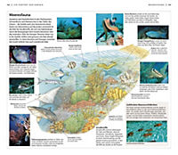 Vis-à-Vis Reiseführer Karibik - Produktdetailbild 3