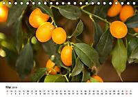 VITAMINE AUS DER NATUR (Tischkalender 2019 DIN A5 quer) - Produktdetailbild 5