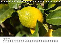 VITAMINE AUS DER NATUR (Tischkalender 2019 DIN A5 quer) - Produktdetailbild 8