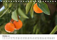 VITAMINE AUS DER NATUR (Tischkalender 2019 DIN A5 quer) - Produktdetailbild 10