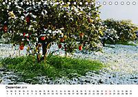 VITAMINE AUS DER NATUR (Tischkalender 2019 DIN A5 quer) - Produktdetailbild 12