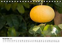 VITAMINE AUS DER NATUR (Tischkalender 2019 DIN A5 quer) - Produktdetailbild 11