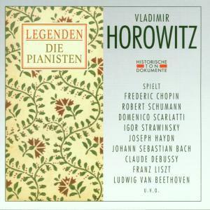 Vladimir Horowitz, Vladimir Horowitz