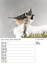 Vögel 2019 - Produktdetailbild 4