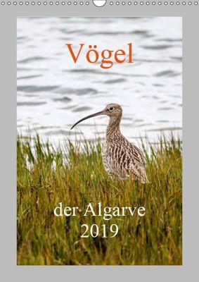 Vögel der Algarve 2019 (Wandkalender 2019 DIN A3 hoch), Liongamer1