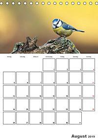 Vögel im heimischen Garten (Tischkalender 2019 DIN A5 hoch) - Produktdetailbild 8