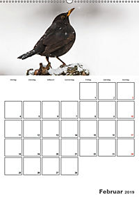 Vögel im heimischen Garten (Wandkalender 2019 DIN A2 hoch) - Produktdetailbild 2