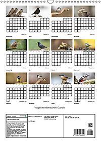 Vögel im heimischen Garten (Wandkalender 2019 DIN A3 hoch) - Produktdetailbild 13