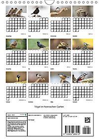 Vögel im heimischen Garten (Wandkalender 2019 DIN A4 hoch) - Produktdetailbild 13