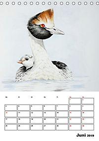 Vögel im Wind (Tischkalender 2019 DIN A5 hoch) - Produktdetailbild 6