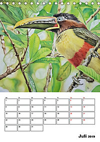 Vögel im Wind (Tischkalender 2019 DIN A5 hoch) - Produktdetailbild 7