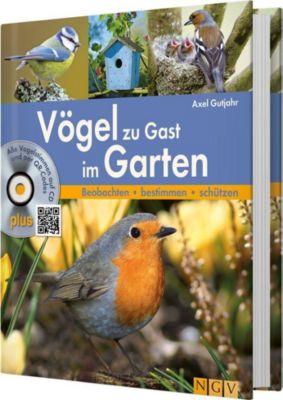 Vögel zu Gast im Garten, m. Audio-CD, Axel Gutjahr