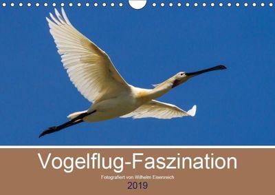 Vogelflug-Faszination (Wandkalender 2019 DIN A4 quer), Wilhelm Eisenreich