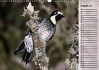 Vogelparadies Costa Rica (Wandkalender 2019 DIN A3 quer) - Produktdetailbild 8